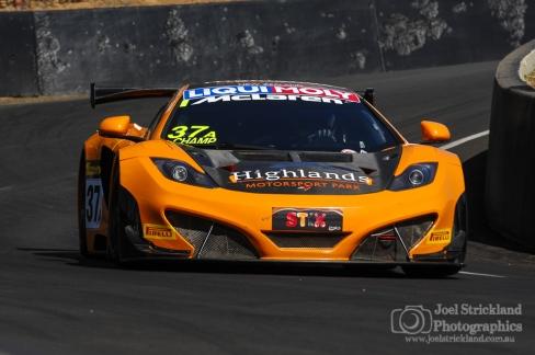 VIP Petfoods McLaren MP12C
